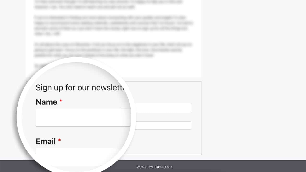 adding the shortcode to the footer.php now allows us to display the newsletter form on every page of our site.