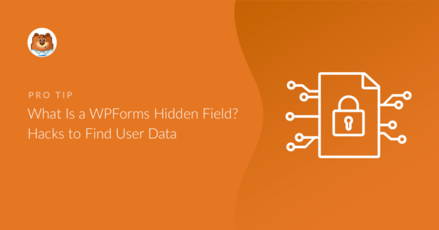 what-is-a-wpforms-hidden-field-hacks-to-find-user-data_o