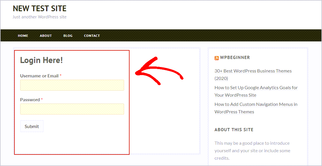 Login Form Preview