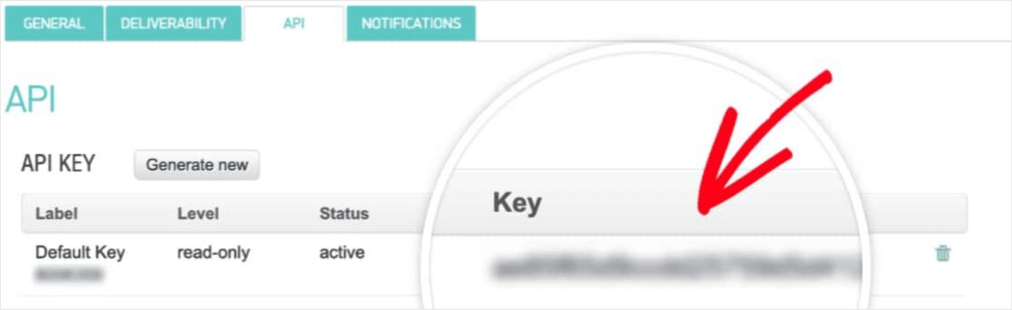 copying your api key