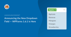 announcing-the-new-dropdown-field-wpforms-161-is-here_b
