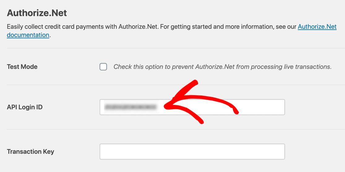 Authorize.Net payment form API key