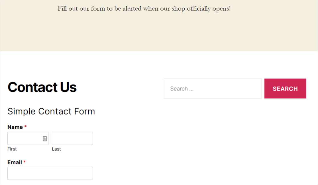 contact us form in footer widget