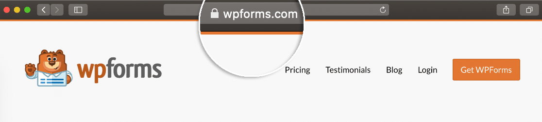 Secure SSL padlock for online payment form