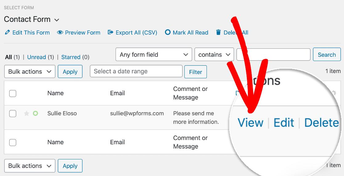 View WordPress form entry