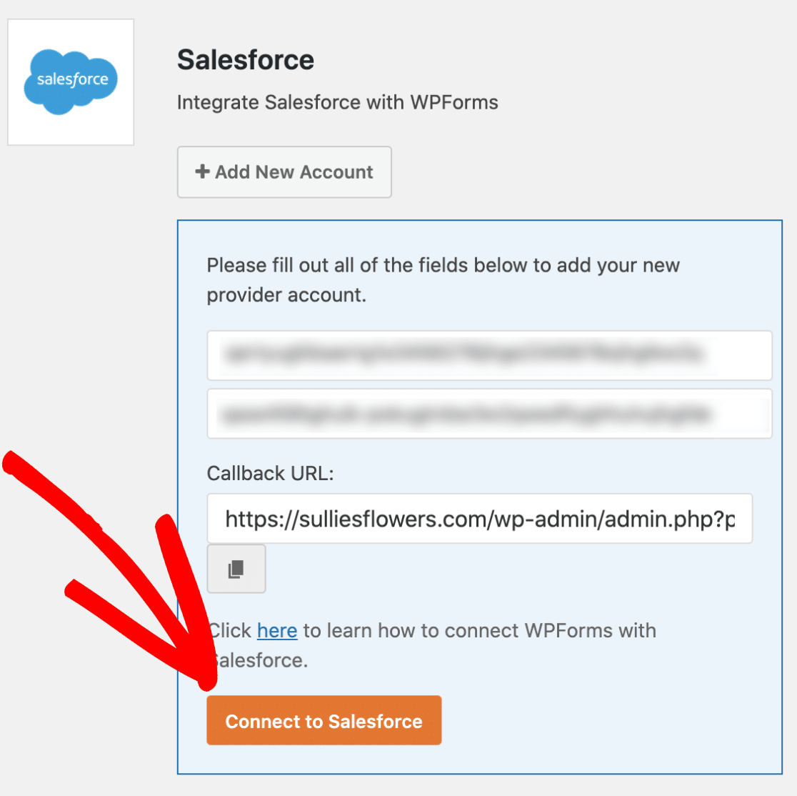Connect WPForms to Salesforce