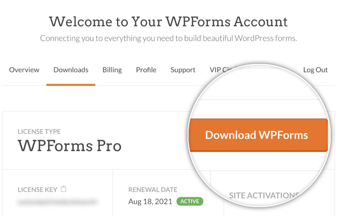 Download WPForms button