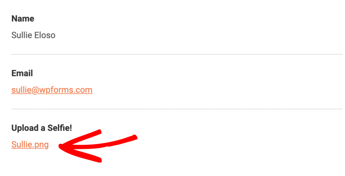 File Uploads in Notification Email