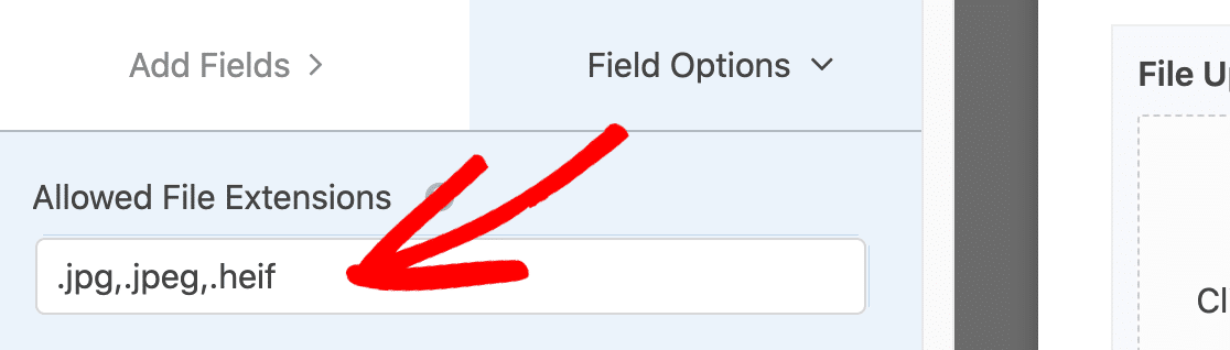Choose the file extensions on your file upload form