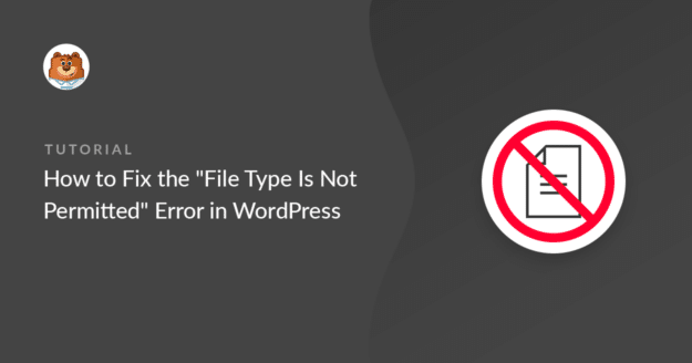 Fix the File Type is Not Permitted error