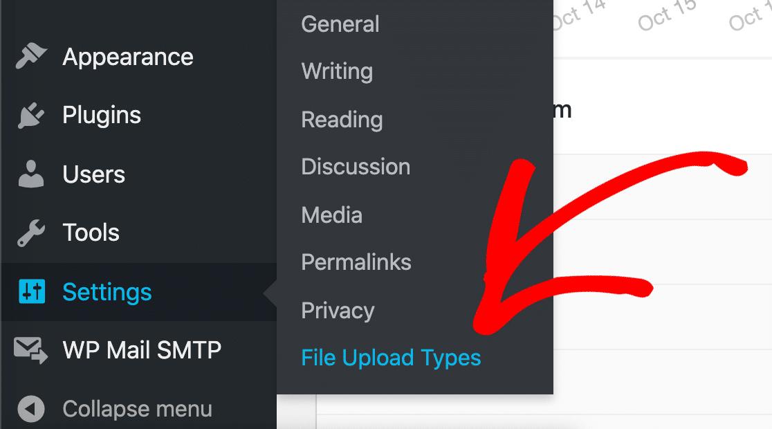 Click the File Upload Types WordPress menu