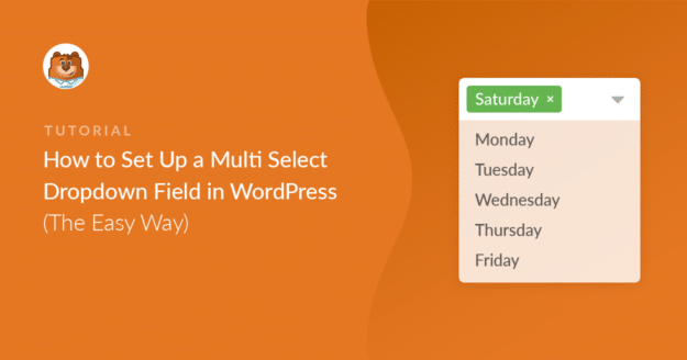 how-to-set-up-a-multi-select-dropdown-field-in-wordpress