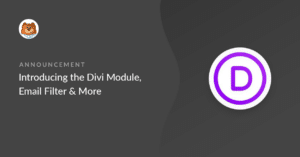 Introducing the Divi Module