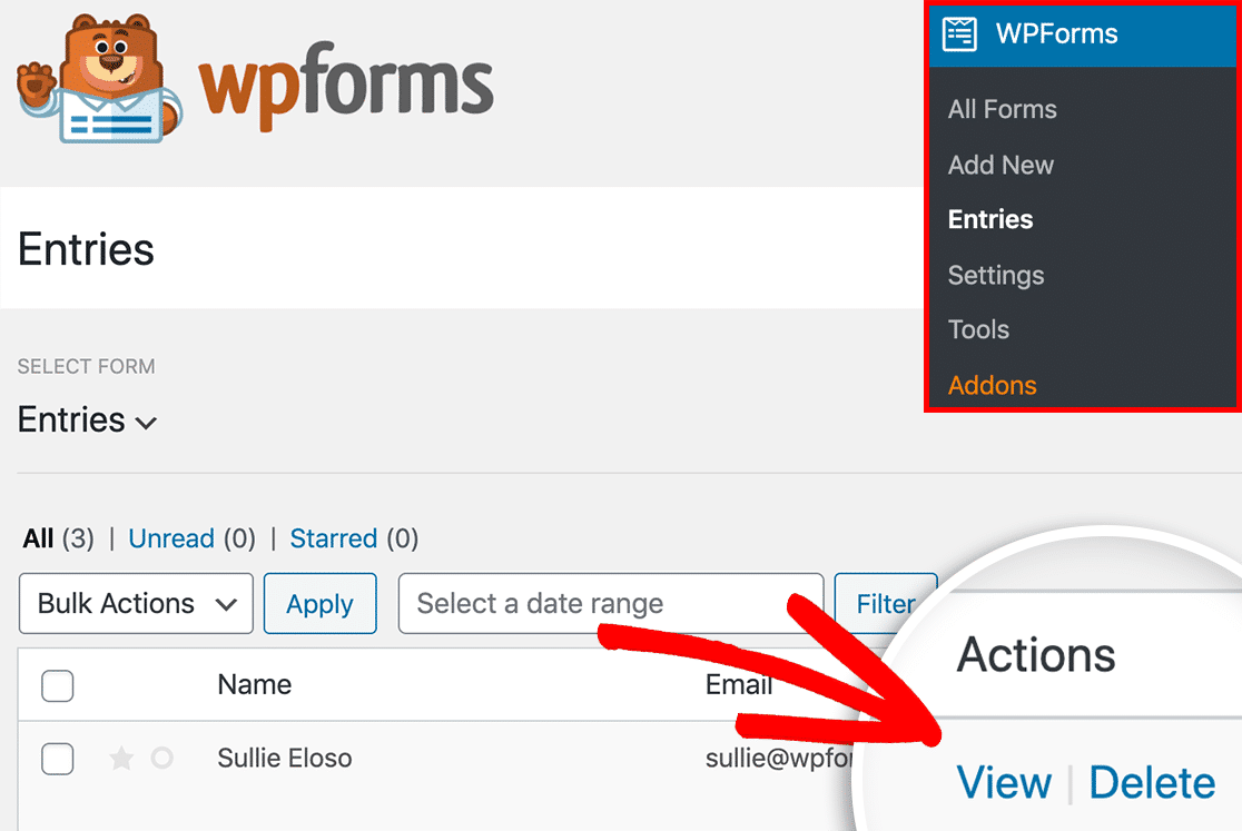 View individual entry page in WPForms
