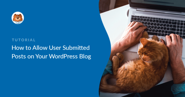 Allow User Submitted Posts in WordPress