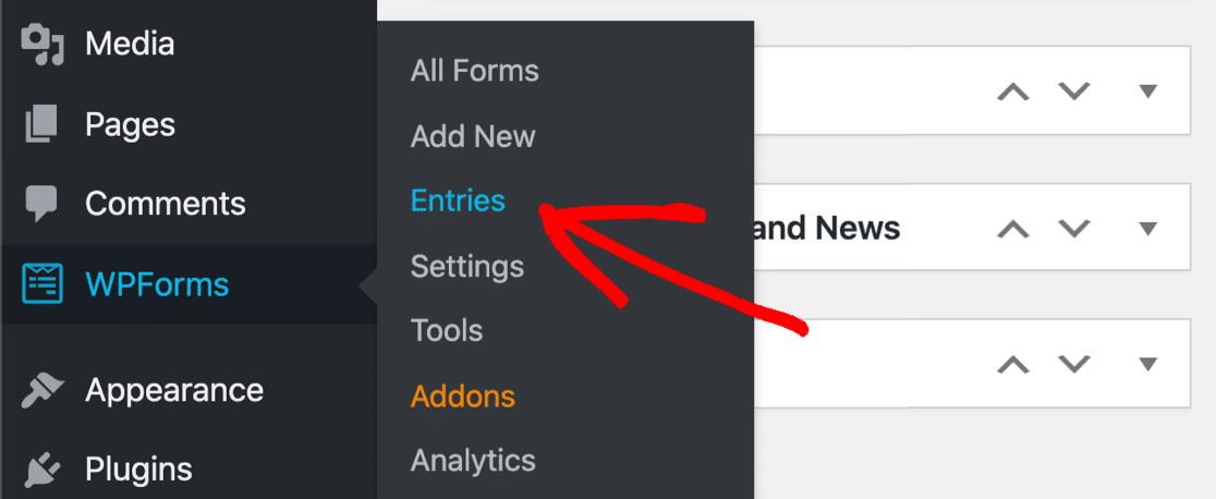 View SendFox WordPress form entries in WPForms