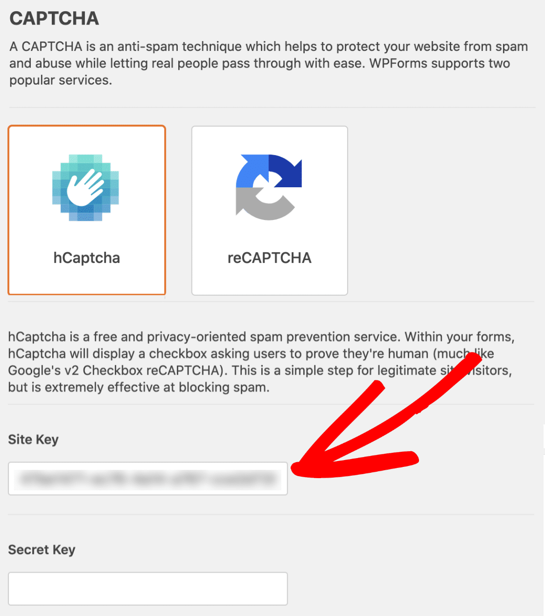 Paste Sitekey On WPForms Dashboard