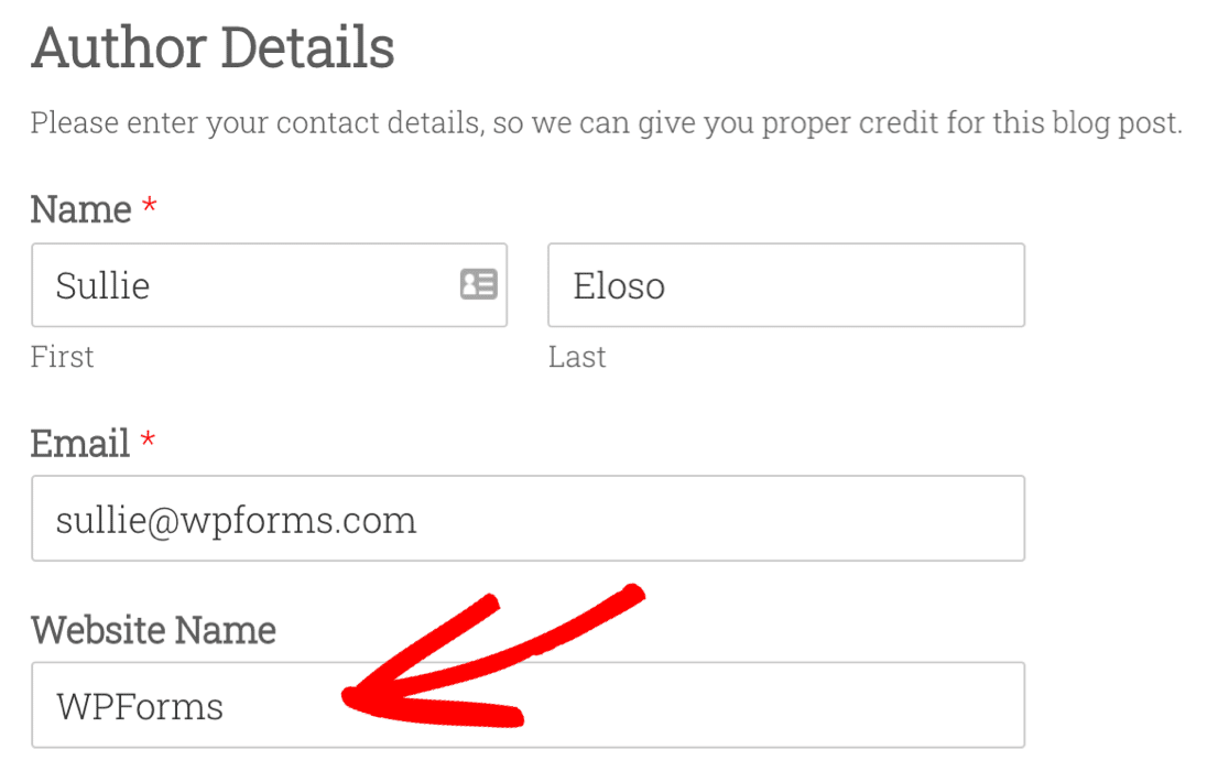 Custom field in user submitted post form