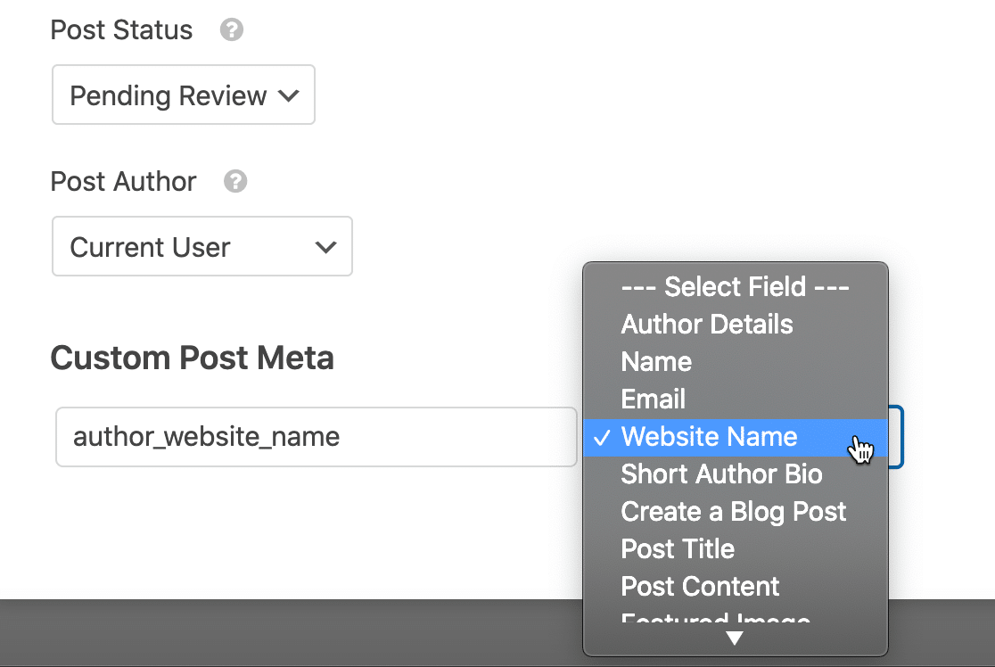 Set up custom field on guest post form