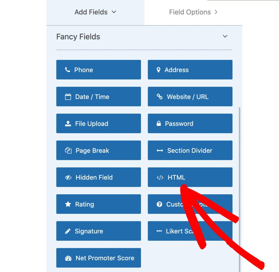 HTML field option
