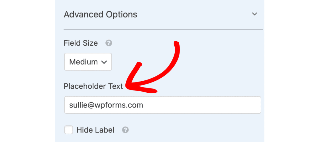 Email placeholder text