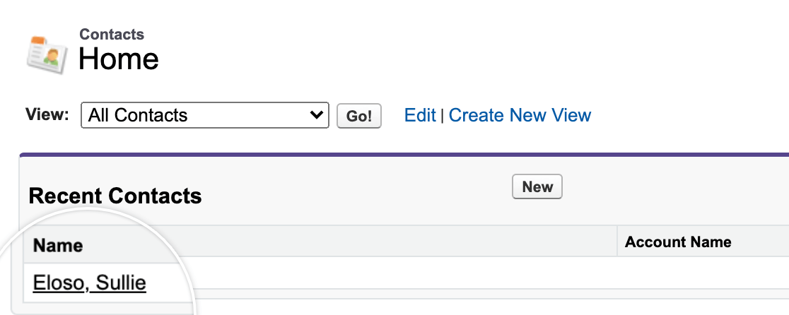 Viewing a test contact in Salesforce