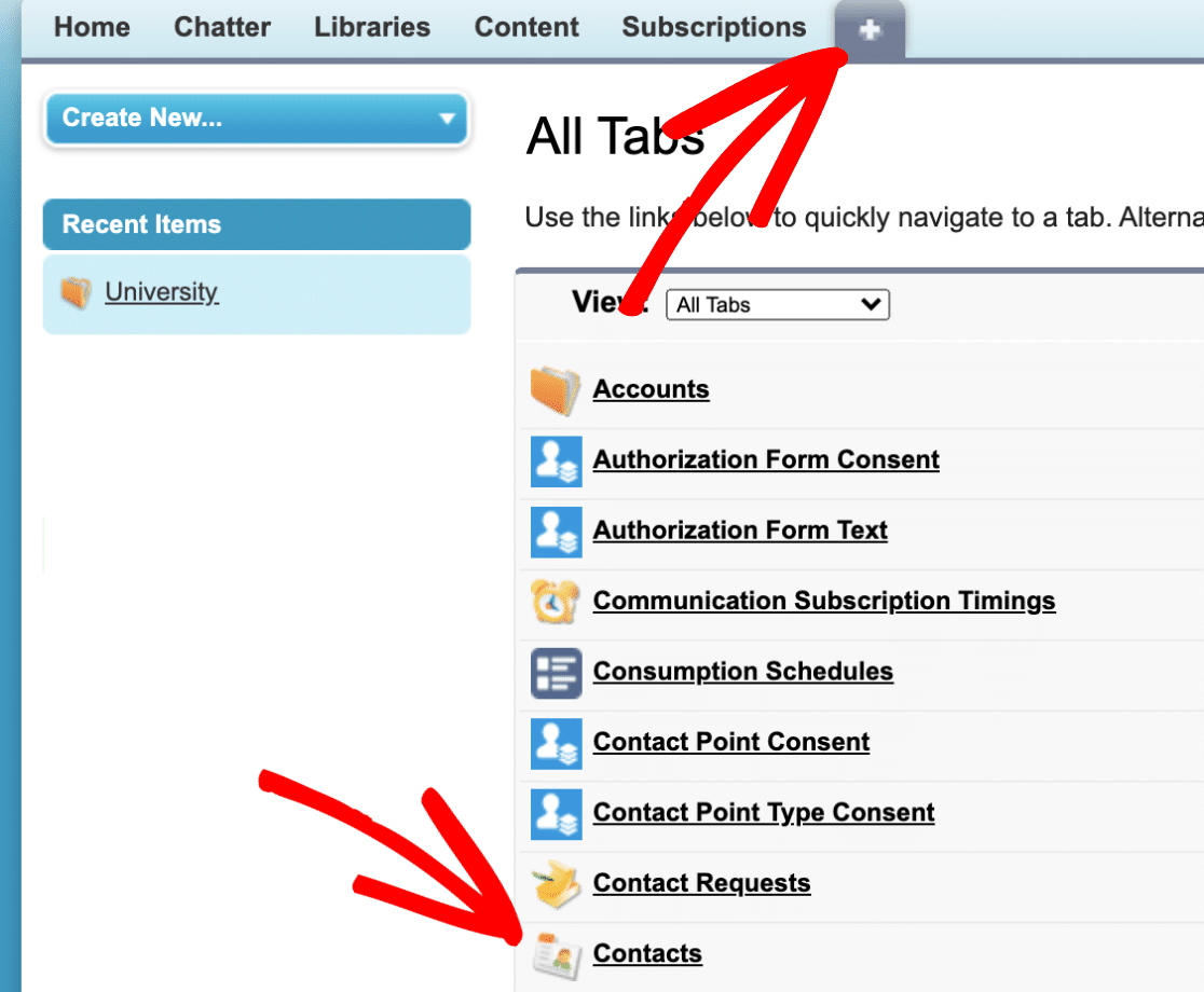 Contacts List in Salesforce