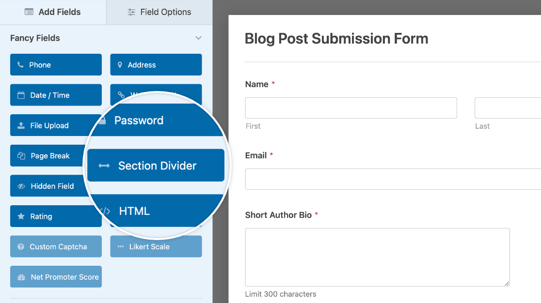Adding a Section Divider field to a form