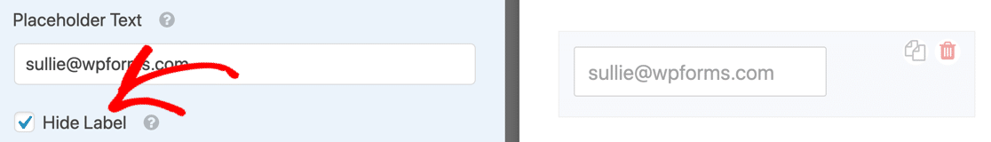 Hide the field label with placeholder text