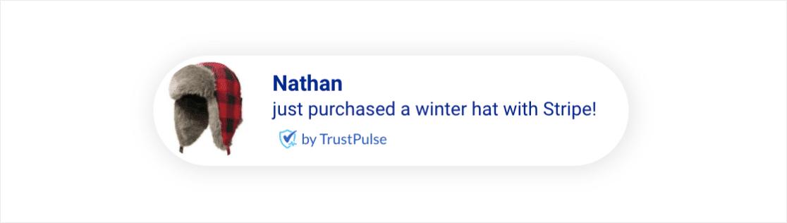 Stripe notification in TrustPulse