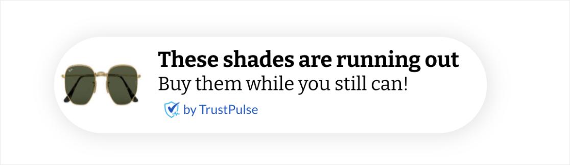 Sales notifications with TrustPulse