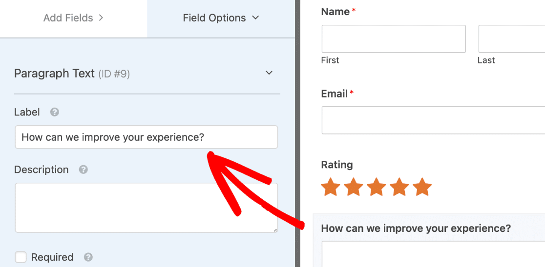 Add paragraph field to form