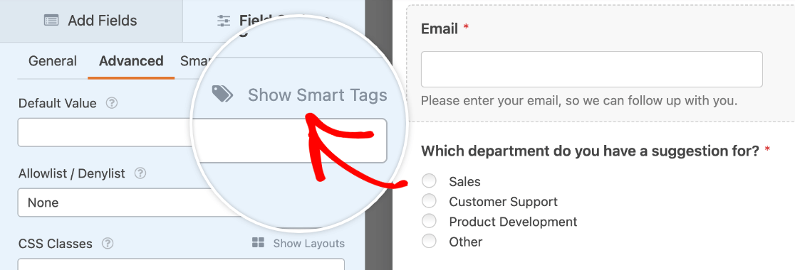 Viewing Smart Tags for the Email field's default value