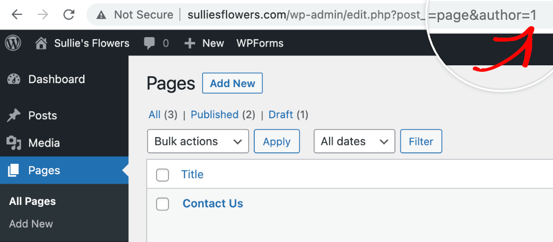 Viewing the author ID number in the browser address bar