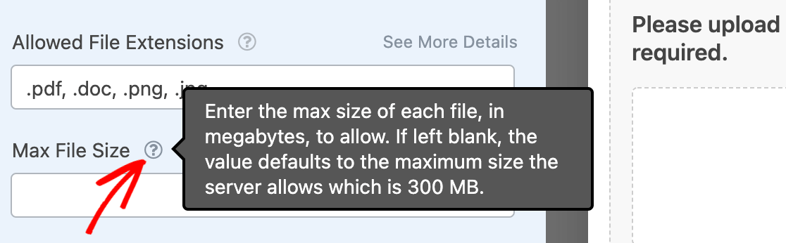 Viewing the maximum file upload size for the server