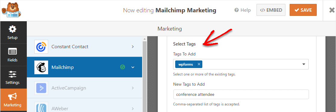tags in mailchimp addon