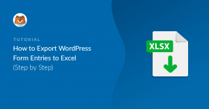 how-to-convert-wordpress-form-entries-to-excel_b