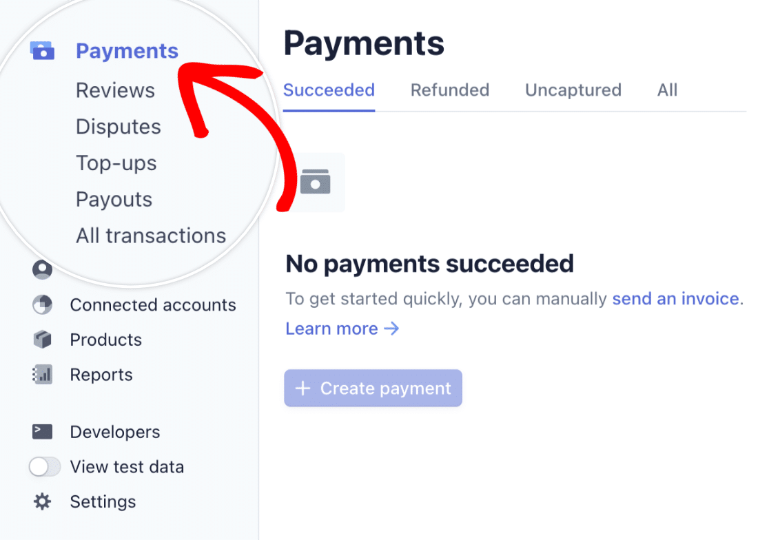 Stripe view payment