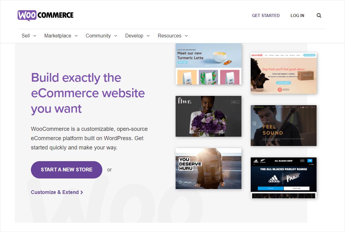 woocomerce best ecommerce wordpress plugin