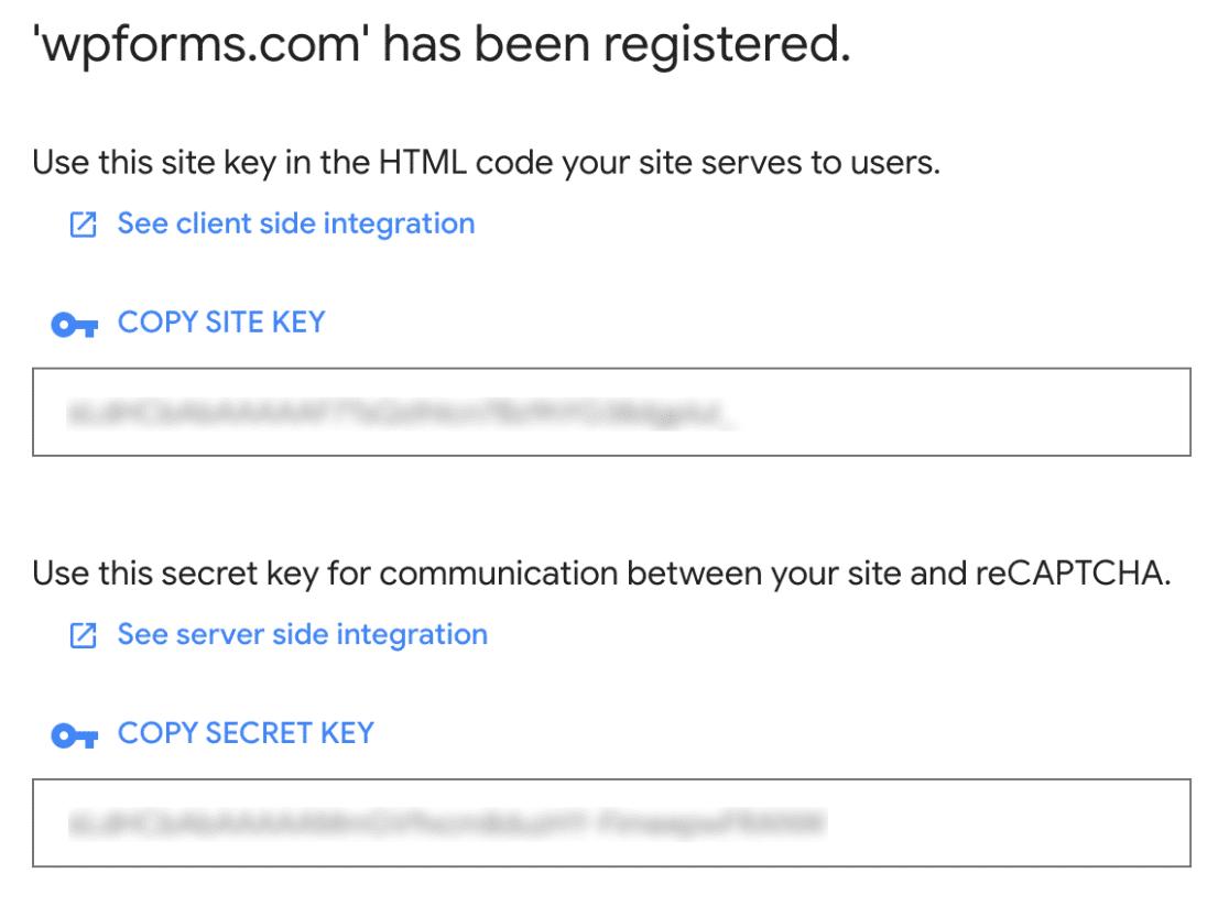Copy reCAPTCHA keys