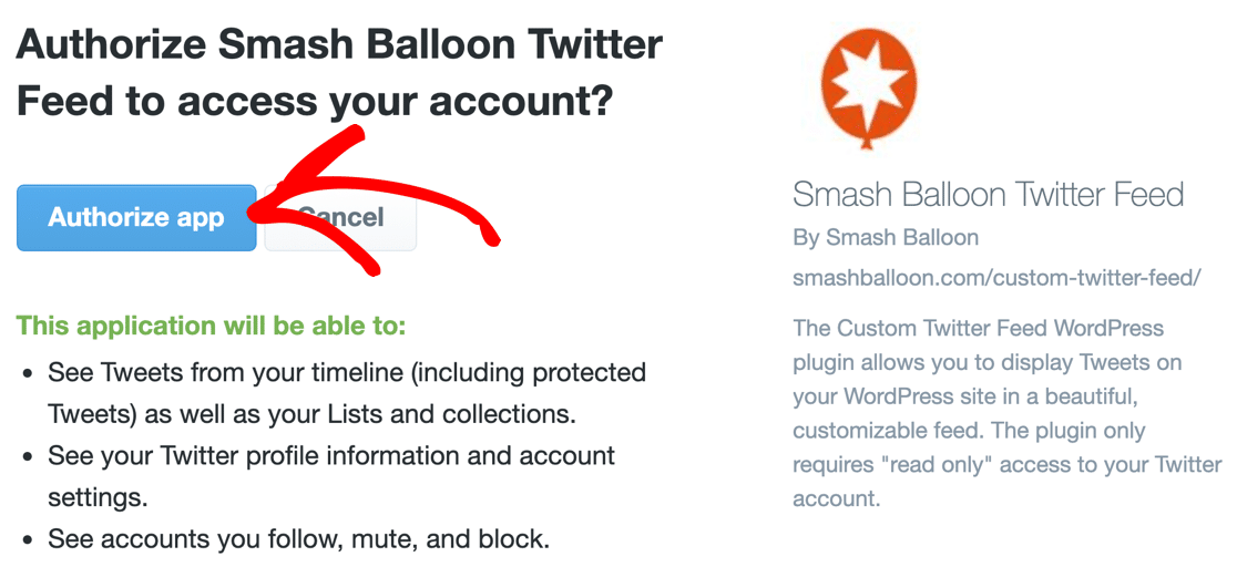 Authorize Smash Balloon