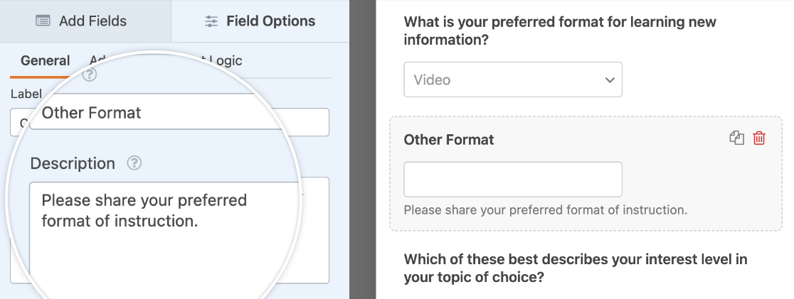 """Customizing the """"Other"""" input field label and description"""
