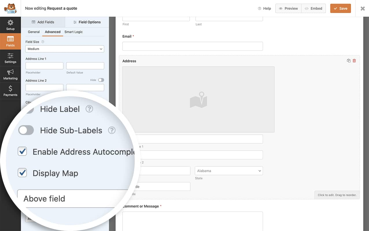 create your form and enable autocomplete and display map on the address field to send geolocation values through webhooks