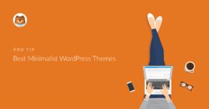 best-minimalist-wordpress-themes
