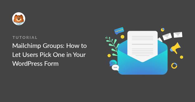 Mailchimp Groups in WordPress